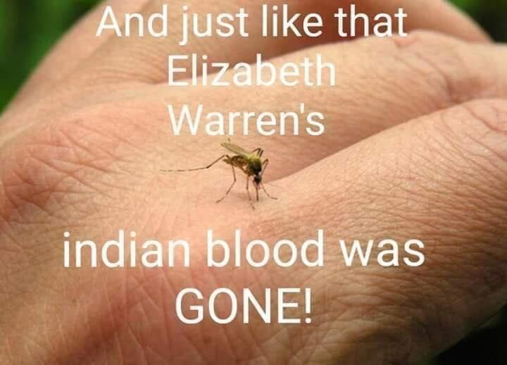 elizabethwarren.jpg